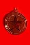 MWSA Gold Medal closeup on red background.