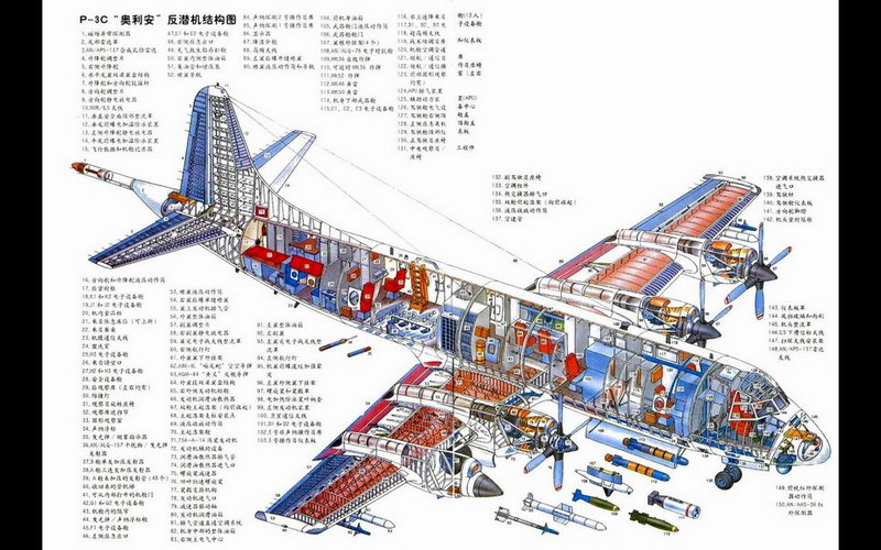P-3 Orion Cutaway